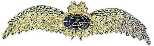 Pilots Wings Brooch
